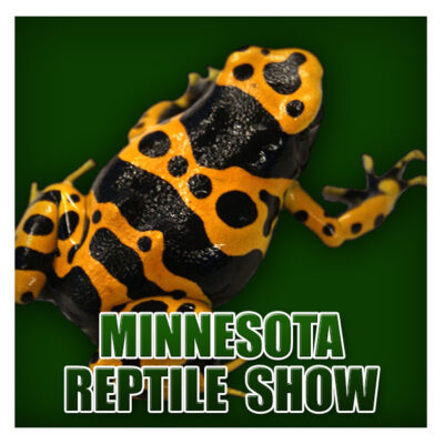 MN Reptile Show