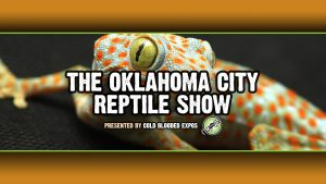 OKC Reptile Shows | Cold Blooded Expos