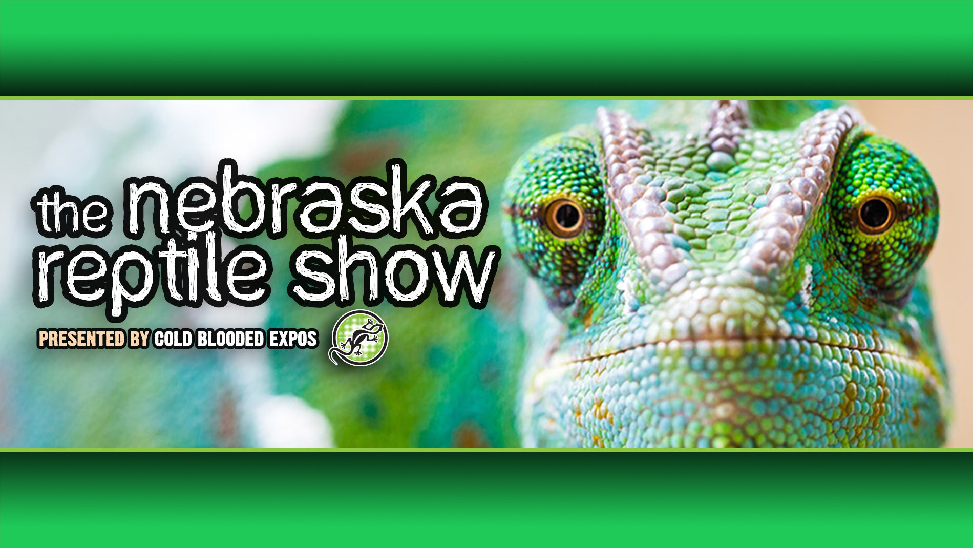 Nebraska Reptile Show Cold Blooded Expos